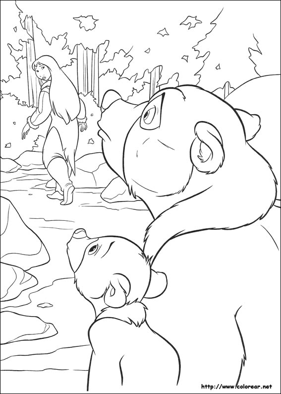 Coloring Pages Oso