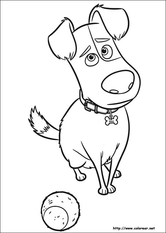 Dibujos de Mascotas para colorear en Colorear.net