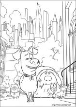Dibujos De Mascotas Para Colorear En Colorearnet