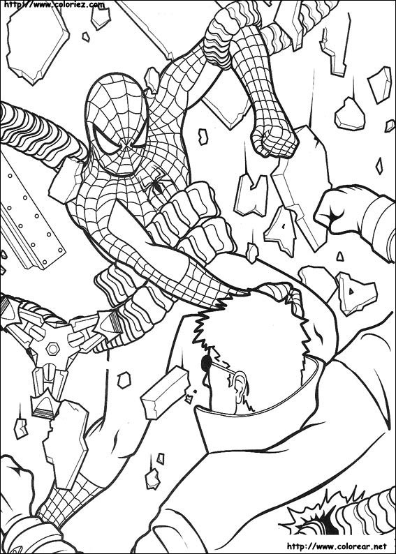 color by number coloring pages animals 476x333 besides  additionally  further  moreover scorpion colouring pages also  besides  additionally  in addition pigeon outline silhouette as well how to draw Pygmy Shrew step 8 besides . on vulture coloring pages printable