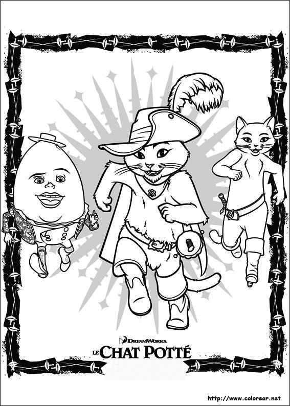 ALBORNOZ: Foto Blog: La Novia del Gato